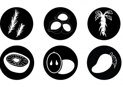 SEVEN Key Ingredient Icons